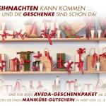 Roesch-Roesch-Angebot-Aveda-1